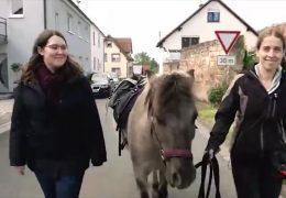 In Freimersheim kommen Bücher mit dem Ponyexpress