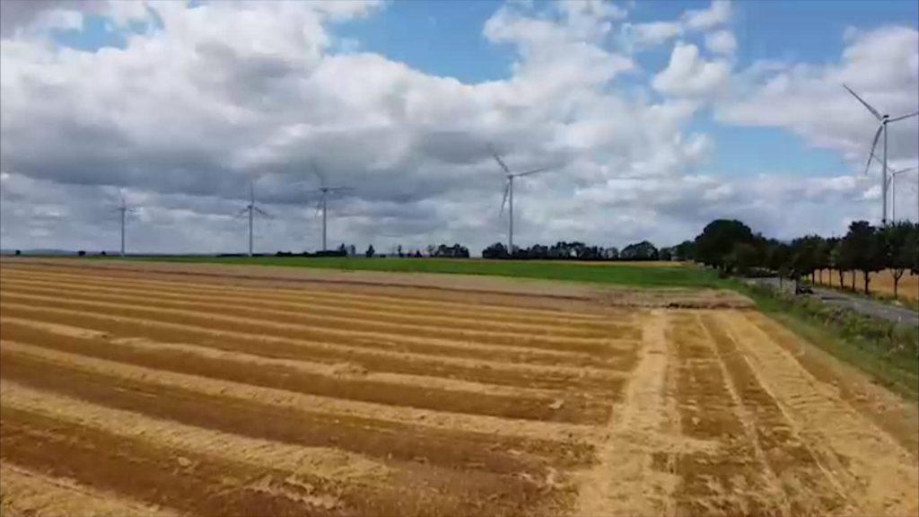 Bauern geben Ausblick auf die diesjährige Ernte